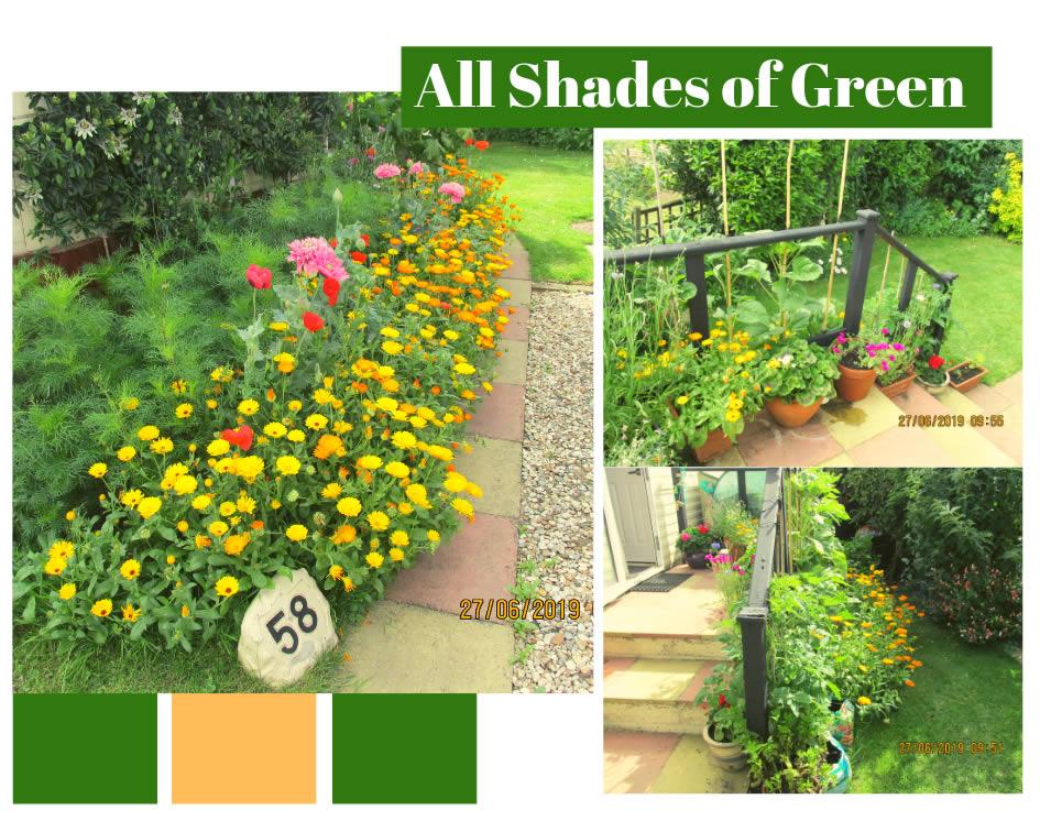 All Shades of Green Holiday Blog Banner