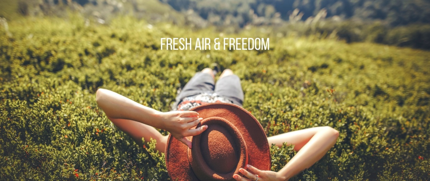 fresh air and freedom banner
